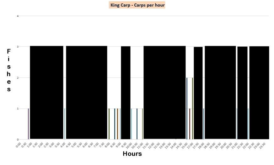 Кинг Карп - результаты по часам
