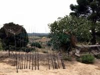 Ло Де Бруно - наша база